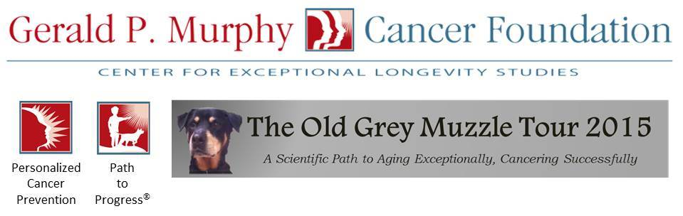 Gerald P. Murphy Cancer Foundation